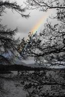 A Rainbow on a wet day