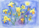 Daffodil Flower Fairies