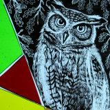 Illustration Of Owl. (Kiln-Fired Glass)