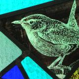 Kiln-Fired Illustration of a Wren on Glass