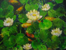 Water Lilies (fish pond) No. 2