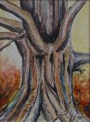 Beech Tree Study I