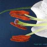 Flowers 165