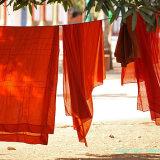 Monks1 095 1