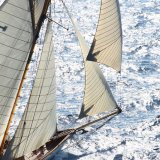 Sails 46 1