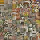 Bark Collage 3