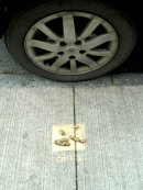 Drogheda - paved with ....(detail)