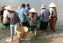Vietnamese Fishing