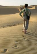 The Untrodden Path