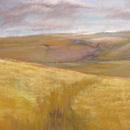 Golden fields - Arun Valley