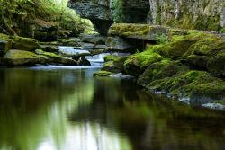 Cwm Taf Fechan local nature reserve