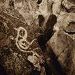 Petroglyph National Park